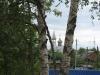 Лобня. Храм Архистратега Михаила на Красной Поляне